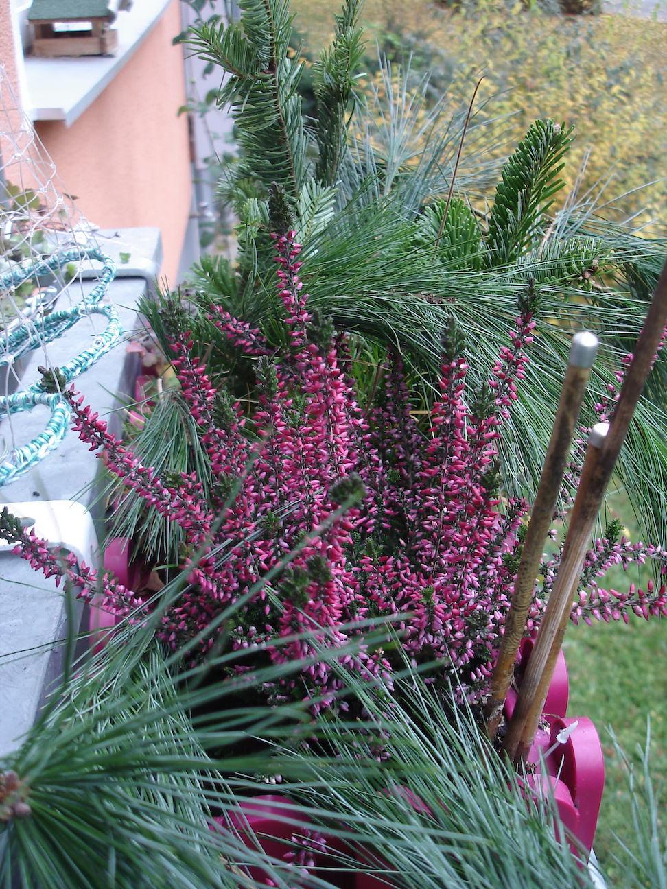 Herbst Auf Dem Balkon Fadenspiel Und Fingerwerk